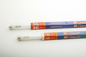 Fluorescent Lamp (FL)